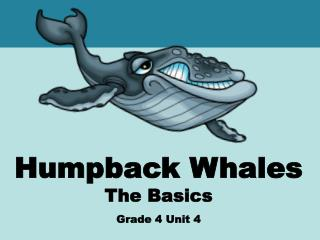 Humpback Whales The Basics Grade 4 Unit 4