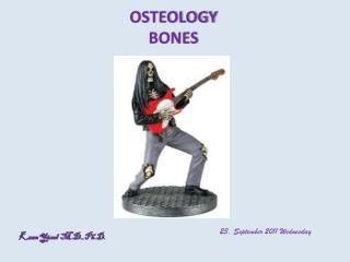 OSTEOLOGY BONES