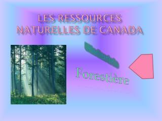 Les  Ressources Naturelles  de Canada