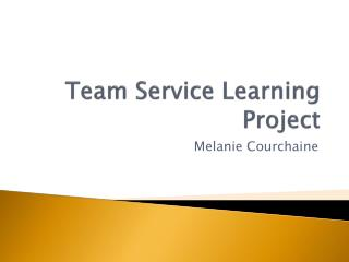 Team Service Learning Project