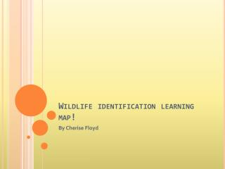 Wildlife identification learning map!
