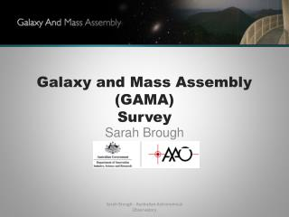 Galaxy and Mass Assembly  (GAMA)  Survey
