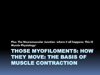 Those Myofiloments: How They Move: The Basis of Muscle Contraction