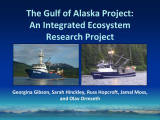 The Gulf of Alaska Project:  An Integrated Ecosystem Research Project