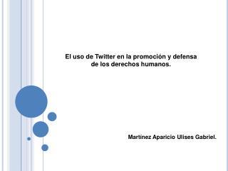 El uso de Twitter en la promoción y defensa de los derechos humanos.