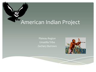 American Indian Project