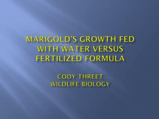 Marigold's  Growth Fed with  Water  Versus  Fertilized Formula Cody  Threet Wildlife Biology