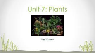 Unit 7: Plants