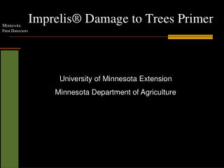 Imprelis ® Damage to Trees Primer
