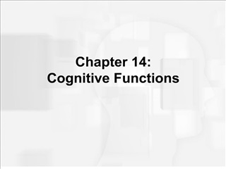 Chapter 14: Cognitive Functions