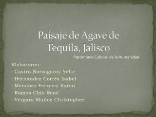 Paisaje de Agave de  Tequila, Jalisco
