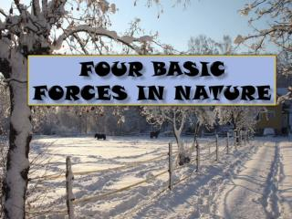 FOUR BASIC FORCES IN NATURE