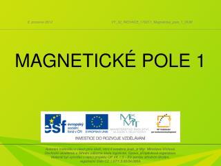MAGNETICKÉ POLE 1