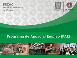 Programa de Apoyo al Empleo ( PAE )