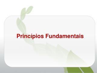 Princ�pios Fundamentais