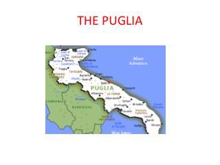 THE PUGLIA