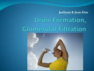 Urine Formation,  Glomerular  Filtration