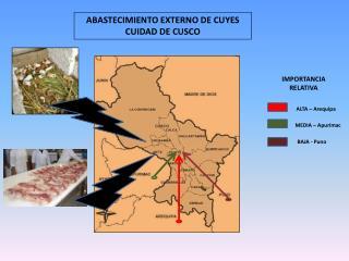 ABASTECIMIENTO EXTERNO DE CUYES  CUIDAD DE CUSCO
