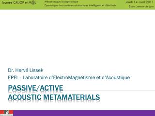 Passive/Active  Acoustic metamaterials