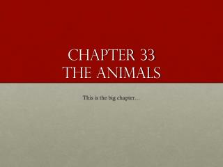 Chapter 33  The ANIMALS