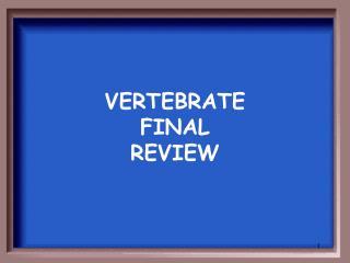 VERTEBRATE  FINAL  REVIEW