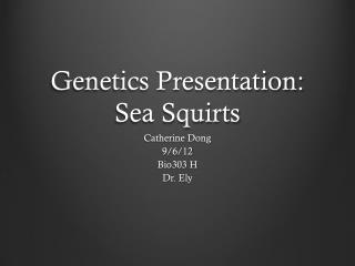Genetics Presentation: Sea Squirts