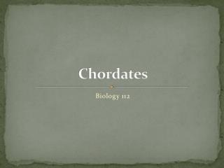 Chordates