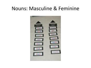 Nouns: Masculine & Feminine