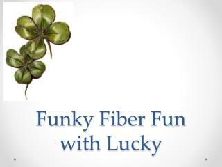 Funky Fiber Fun with Lucky