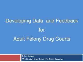 Developing Data  and Feedback  for  Adult Felony Drug Courts
