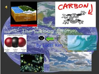The Carbon Journey