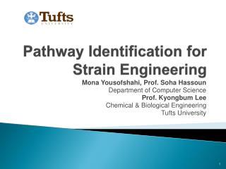Pathway Identification for  Strain Engineering