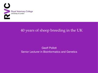 40 years of sheep breeding in the UK