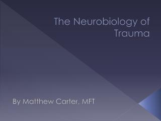 The Neurobiology of Trauma