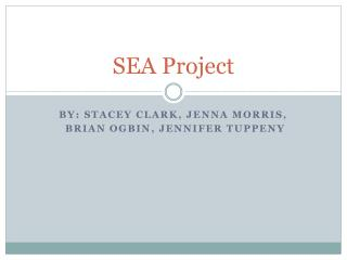 SEA Project