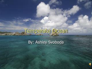 Temperate Ocean