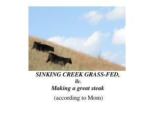 SINKING CREEK GRASS-FED,  llc. Making a great steak