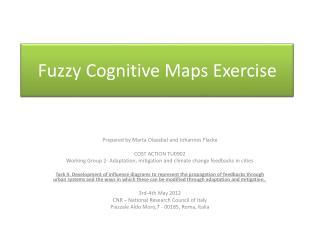Fuzzy Cognitive Maps E xercise