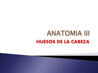 ANATOMIA III