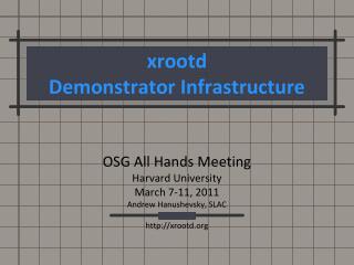 xrootd Demonstrator Infrastructure