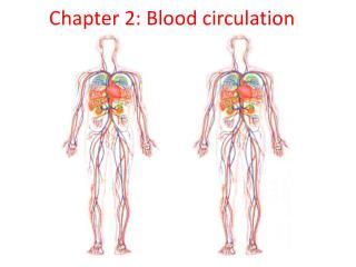 Chapter 2: Blood circulation