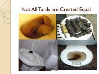 Not All  Turds  are Created Equal