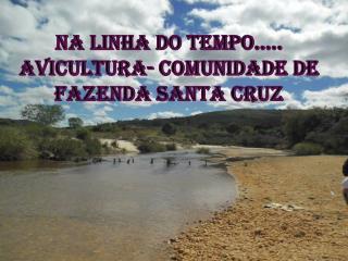NA LINHA DO TEMPO..... Avicultura- Comunidade de fazenda santa cruz