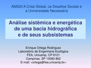 Análise sistêmica e energética  de uma bacia hidrográfica  e de seus subsistemas