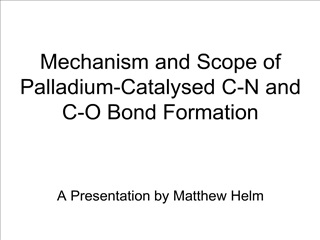Mechanism and Scope of Palladium-Catalysed C-N and C-O Bond ...