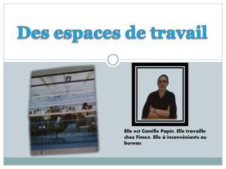 Elle est Camille Papin. Elle travaille chez Fimex. Elle  á  inconvénients au bureau.