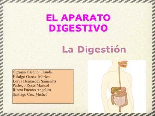 EL APARATO DIGESTIVO  La Digestión