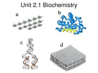 Unit 2.1 Biochemistry