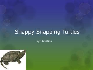 Snappy Snapping Turtles