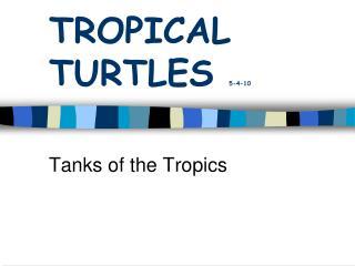 TROPICAL TURTLES  5-4-10